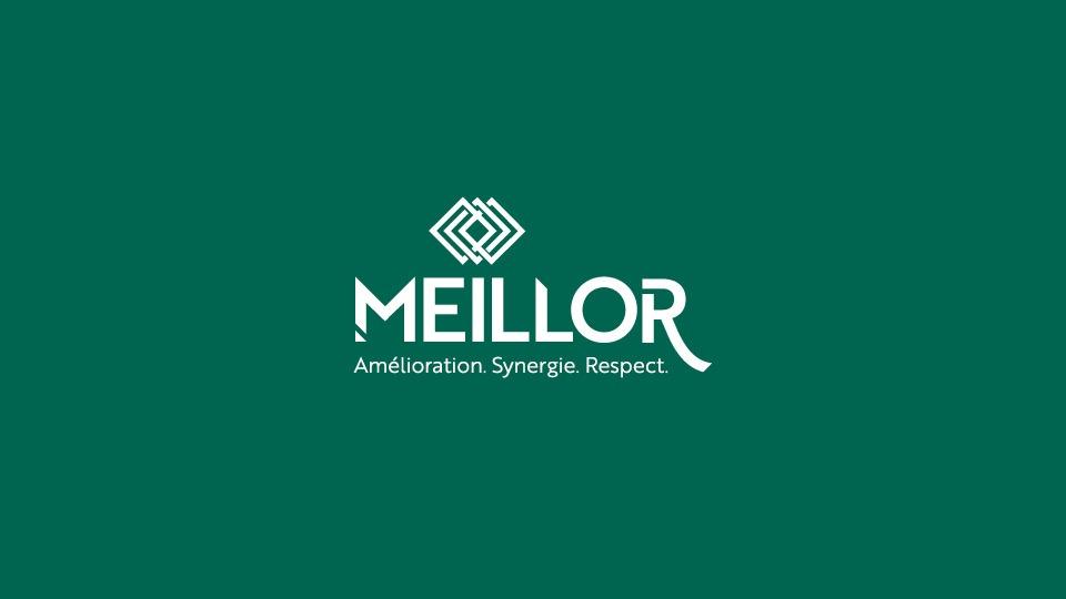 Meillor_logo_blanc_fondvert
